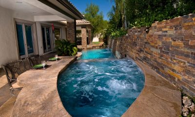 Pool and Spa Industry: The Path to Success