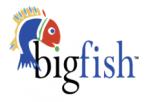 BigFish Publications