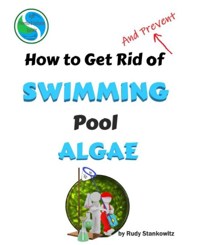 How to Get Rid of Swimming Pool Algage - Rudy Stankowitz