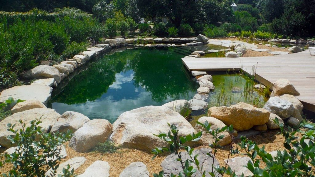 Natural pools and ponds have become increasingly popular with the recent chlorine shortages