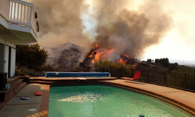 Cleaning a Pool After a Wildfire