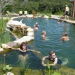 Natural Pools - The Pros & Cons of Going Au Naturel - Are NSP's (Natural Swimming Pools Safe?)